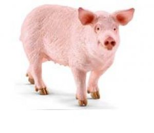 Schleich - Pig by Various