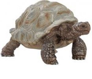 Schleich - Giant tortoise by Various
