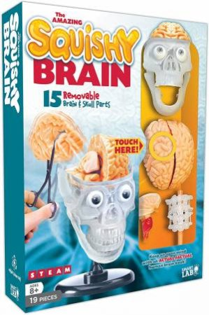 The Amazing Squishy Brain by Various