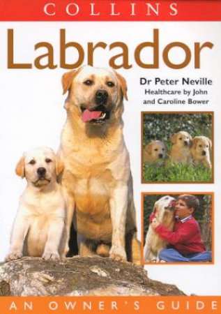 The Labrador: An Owner's Guide by Peter Neville