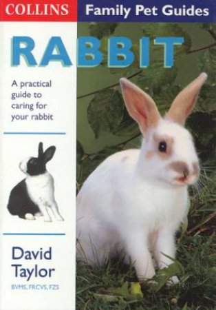 Collins Family Pets: Rabbit by David Taylor