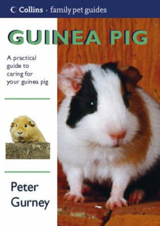 Collins Family Pets: Guinea Pig by Peter Gurney