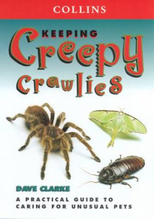Collins Unusual Pets: Keeping Creepy Crawlies by Dave Clarke