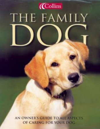 Collins The Family Dog by David Taylor