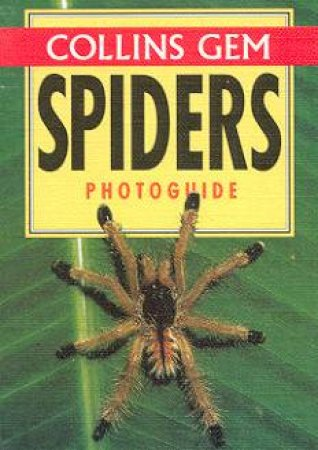 Collins Gem: Spiders Photoguide by Various
