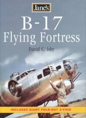 B17 Flying Fortress by David Cosby