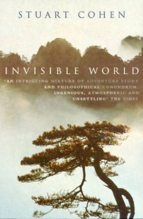 Invisible World by Stuart Cohen