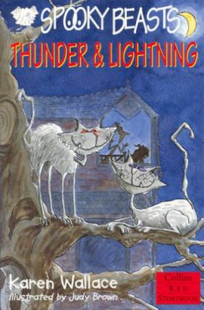 Collins Red Storybook: Thunder & Lightning by Karen Wallace