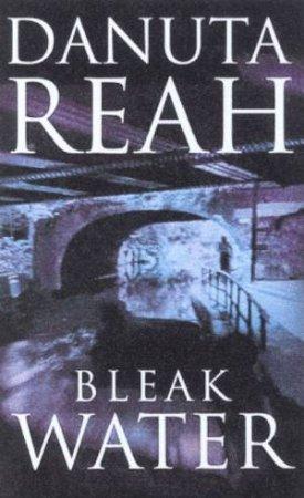 Bleak Water by Danuta Reah
