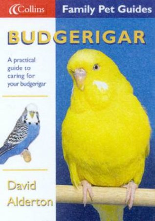 Collins Family Pet Guides: Budgerigar by David Alderton