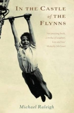 In The Castle Of The Flynns by Michael Raleigh