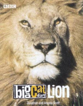 Big Cat Diary: Lion by Jonathan & Angela Scott