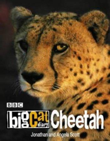 Big Cat Diary: Cheetah by Jonathan & Angela Scott