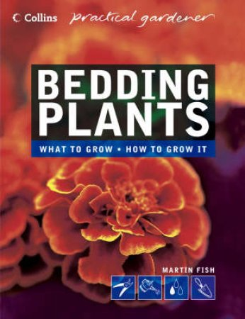 Collins Practical Gardener: Bedding Plants by Martin Fish
