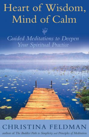 Meditation Plain And Simple by Christina Feldman