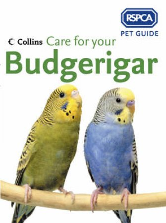 RSPCA: Care For Your Budgerigar by Unknown