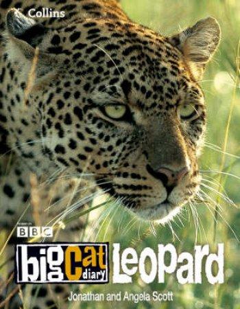 Big Cat Diary: Leopard by Jonathan & Angela Scott