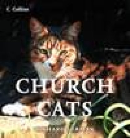 Church Cats: New Edition by Richard Surman