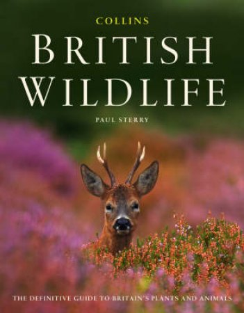 Collins British Wildlife by Paul Sterry
