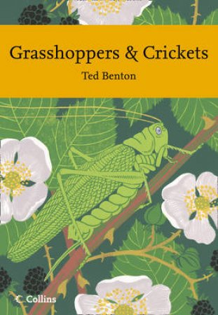Grasshoppers and Crickets by Ted Benton