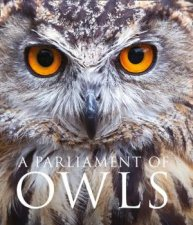 A Parliament Of Owls by Mike Unwin & David Tipling