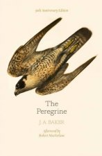 The Peregrine 50th Anniversary Edition Afterword By Robert Macfarlane