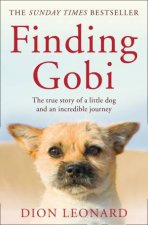 Finding Gobi The True Story Of A Little Dog And An Incredible Journey