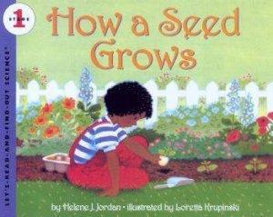 How A Seed Grows by Helene J Jordan
