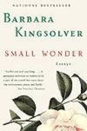 Small Wonder - Cassette by Barbara Kingsolver