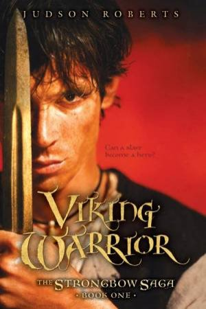 The Viking Warrior by Judson Roberts