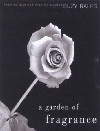 A Garden Of Fragrance by Suzy Bales