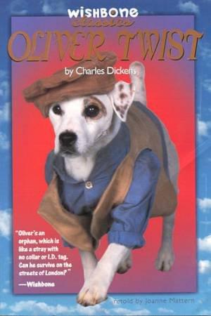 Oliver Twist by Joanne Mattern