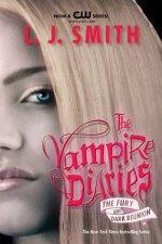 The Vampire Diaries Bind Up Fury  Dark Reunion