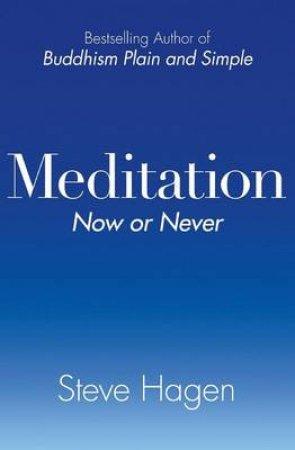 Meditation Now or Never by Steve Hagen