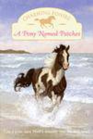 Charming Ponies: A Pony Named Patches by Lois K Szymanski