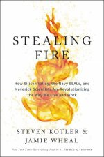 Stealing Fire: How Silicon Valley, The Navy Seals, And Maverick Scientists Are Revolutionizing The Way We Live And Work by Steven Kotler & Jamie Wheal