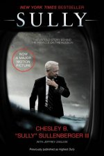 Sully My Search For What Really Matters Film Tiein