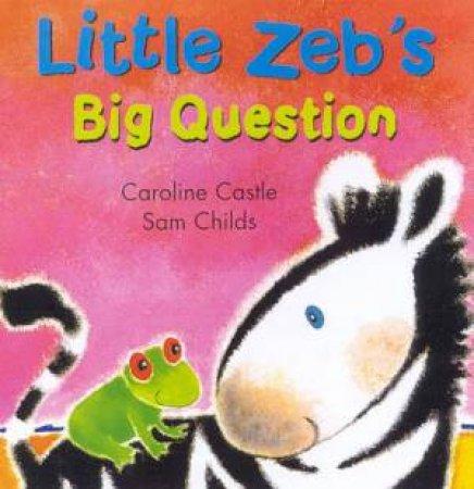 Little Zeb: Little Zeb's Big Question by Caroline Castle & Sam Childs