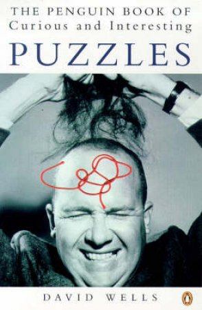 The Penguin Book of Curious & Interesting Puzzles by David Wells