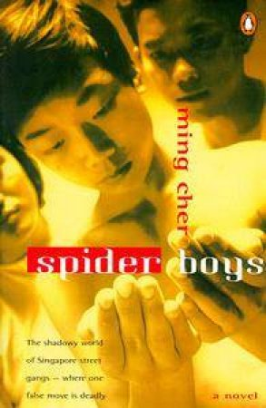 Spider Boys by Ming Cher