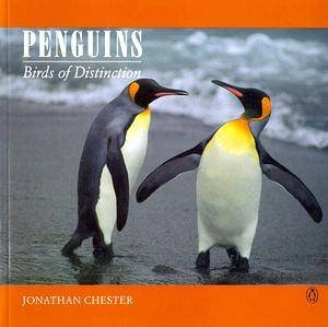Penguins by Jonathan Chester