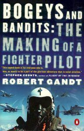 Bogeys & Bandits: The Making Of A Fighter Pilot by Robert Gandt