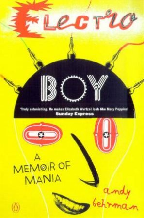 Electroboy: A Memoir Of Mania by Andy Behrman