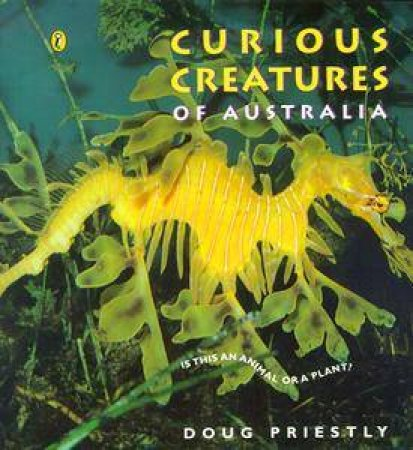 Curious Creatures of Australia by Doug Priestly