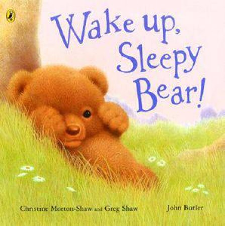 Wake Up, Sleepy Bear by Christine Morton-Shaw et al.