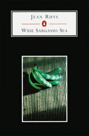 Penguin Student Edition: The Wide Sargasso Sea by Jean Rhys