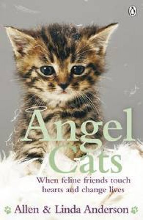 Angel Cats: When Feline Friends Touch Hearts and Change Lives by Allen & Linda Anderson