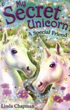 A Special Friend by Linda Chapman