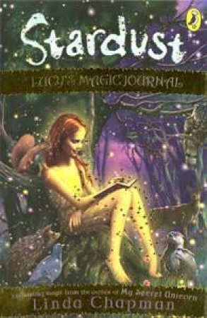 Lucy's Magic Journal: Stardust: Volume 8 by Linda Chapman