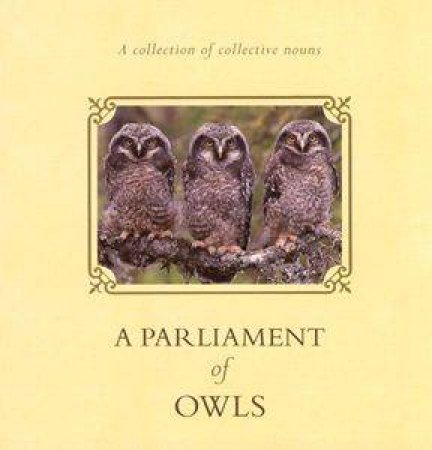 A Parliament Of Owls by Anonymous
